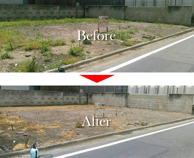 定期的に除草剤を撒きます