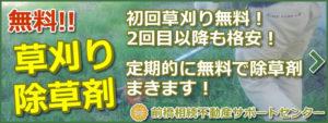 前橋市の空地除草剤・草刈り無料!